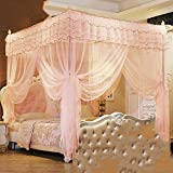 Four corner princess wind mosquito net bed canopy, Three-door opener Stand landing Court Double Home mosquito-curtain-H Queen1