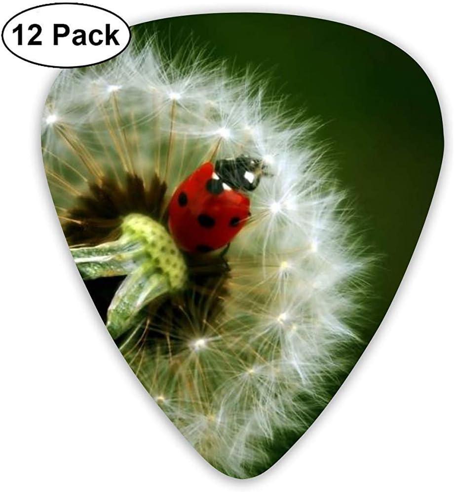 Little Ladybug On A Dandelion Guitar Pick Set Guitarra Bajo Ukulele 0.46mm 0.71mm 0.96mm 12 Pack Guitar Picks Plectrums Holder
