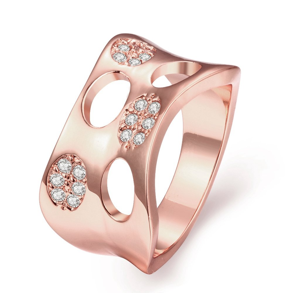 Amazon.com: LuckyWeng Women\'s New Exquisite Fashion Jewelry Rose ...