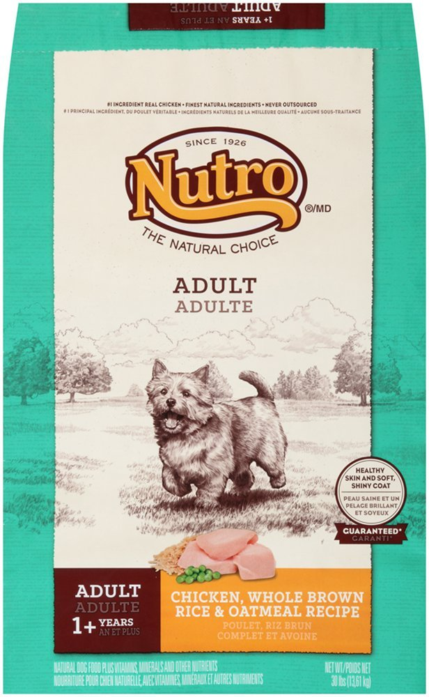 Nutro natural choice chicken brown rice and oatmeal dry dog food nutro natural choice chicken brown rice and oatmeal dry dog food 30 pound bag dry pet food pet supplies amazon forumfinder Choice Image