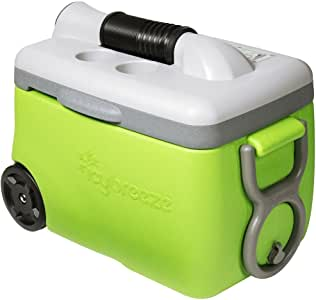 IcyBreeze Portable Air Conditioner and Cooler, Electric Green