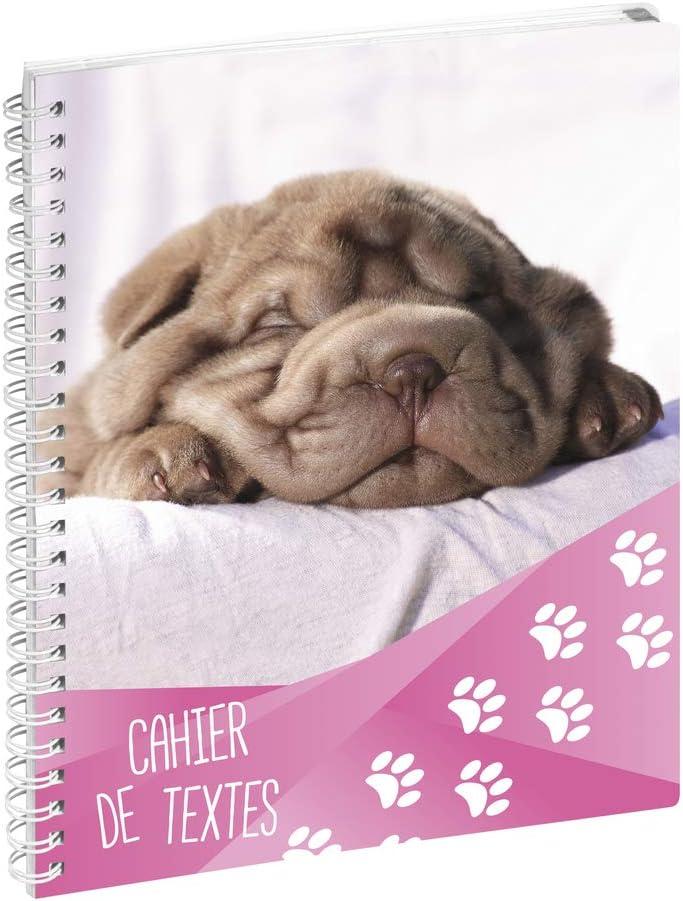 Funny Pets chien. Exacompta 999147E Un Cahier textes /à spirale 17x22 cm