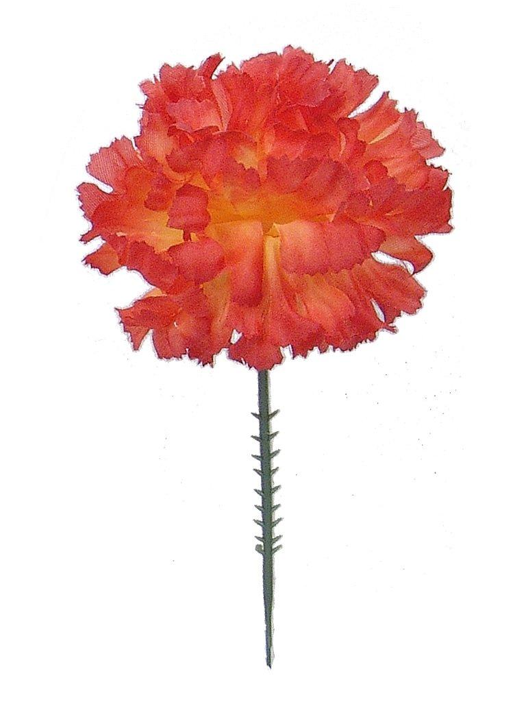 Amazon.com: 100 Carnations 5\