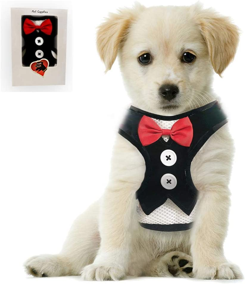 Bark Lover Small Puppy Harness with Bowtie & Interactive Squeaky Toys for Dogs Durable Stuffed Dog Toys
