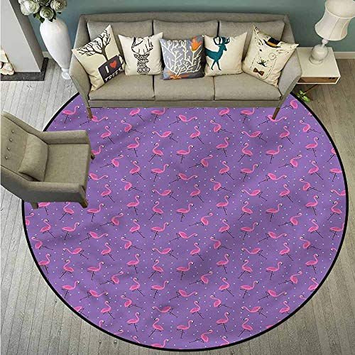 Round Carpet,Flamingo,Dots Birds Kids Girls,Large Area mat,5'3