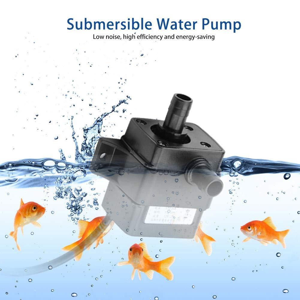 Pompe /à Eau sans Balai DC 5V USB Mini Micro Ultra silencieuse Pompe de Circulation deau silencieuse pour Fontaine daquarium Smandy Pompe /à Eau Submersible