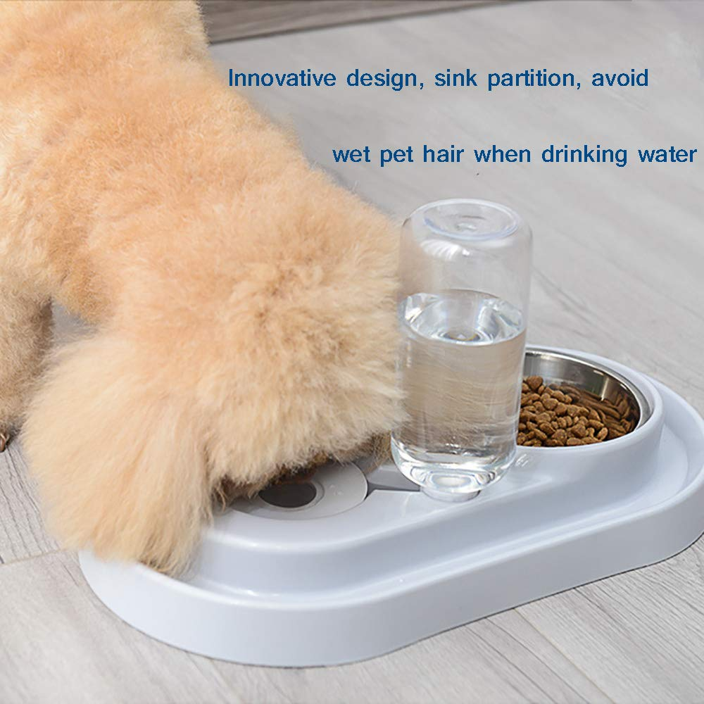 Ciotola per Alimenti in Acciaio Inossidabile di Alta qualit/à Distributore Automatico di Acqua per Cani E Gatti Ciotola per Gatti A Doppio Cane HYPETY Mangiatoia per Animali