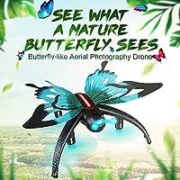 Denshine Butterfly-shaped UAV,Altitude Hold 3D Roll One Key Return Drone