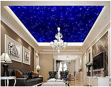 Jbekjg Ceiling Fresco 3d Customized Wallpaper Home Decoration Blue Ceiling Murals 3d Ceiling Murals Wallpaper Ceiling Wallpaper Hd Home Decor 130x60cm Amazon Com