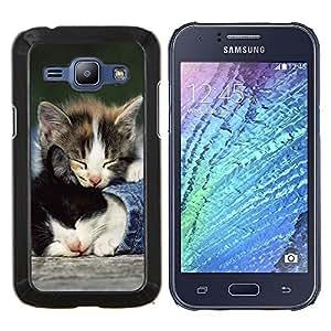 - Cat Cute Sleep - - Cubierta del caso de impacto con el patr??n Art Designs FOR Samsung Galaxy J1 J100 J100H Queen Pattern