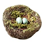 Lillian Rose Moss Bird Nest Ring Holder, 4.5-Inch