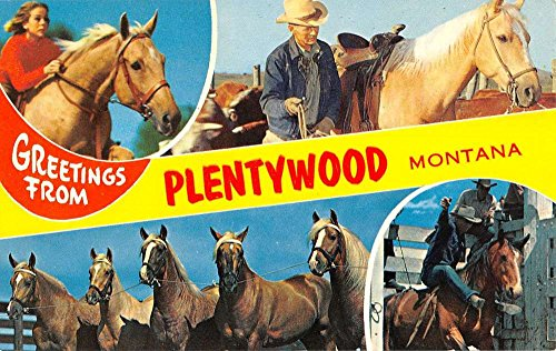 Plentywood Montana Greetings Multiview Cow Boy Horse for sale  Delivered anywhere in USA