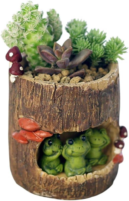messagee creativa plantas flores maceta plantas suculentas DIY Contenedor decorado con Mini colgante Jardín de hadas y Sweet House: Amazon.es: Jardín