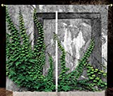 2 Panel Set Satin Window Drapes Kitchen Curtains,Mystic House Decor Ivy on Wall with Aged Antique Empty Picture Frame as Window Creative Art Green Charcoal,for Bedroom Living Room Dorm Kitchen Cafe