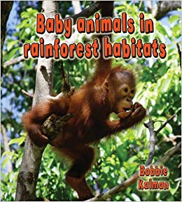 Image of: Sloth Baby Animals In Rainforest Habitats Bobbie Kalman 9780778777458 Books Amazonca Amazonca Baby Animals In Rainforest Habitats Bobbie Kalman 9780778777458