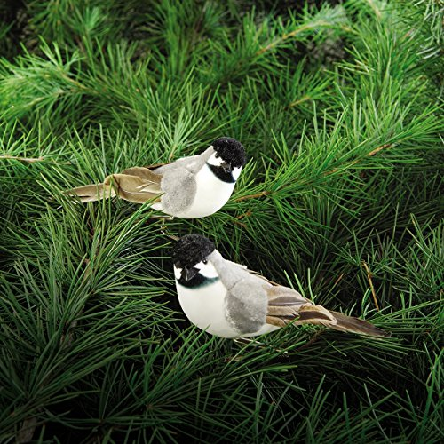 Feather Bird Ornaments - Chickadee Clip Ornament, Assorted of 2