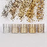 5Pots/Set Champane Silver Glitter Powder Nail Eyeshadow Tattoo Body Face Colorful Sequins For Nail Art 10ml/pot