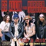 Terror in America [Vinyl]