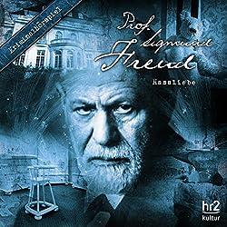 Hassliebe (Prof. Sigmund Freud 7)