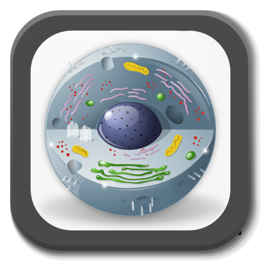 Biology - Lectures - Lessons: Amazon.es: Appstore para Android