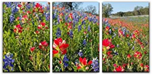 Modern Canvas Painting bluebonnets, indian paintbrush, wildflowers color, texas hill country Wall Art Artwork Decor Printed Oil Painting Landscape Home Office Bedroom Framed Decor (16