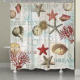 Laural Home DBS72SC Dream Beach Shells Shower Curtain,Multi