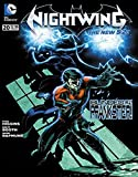 Nightwing: more info