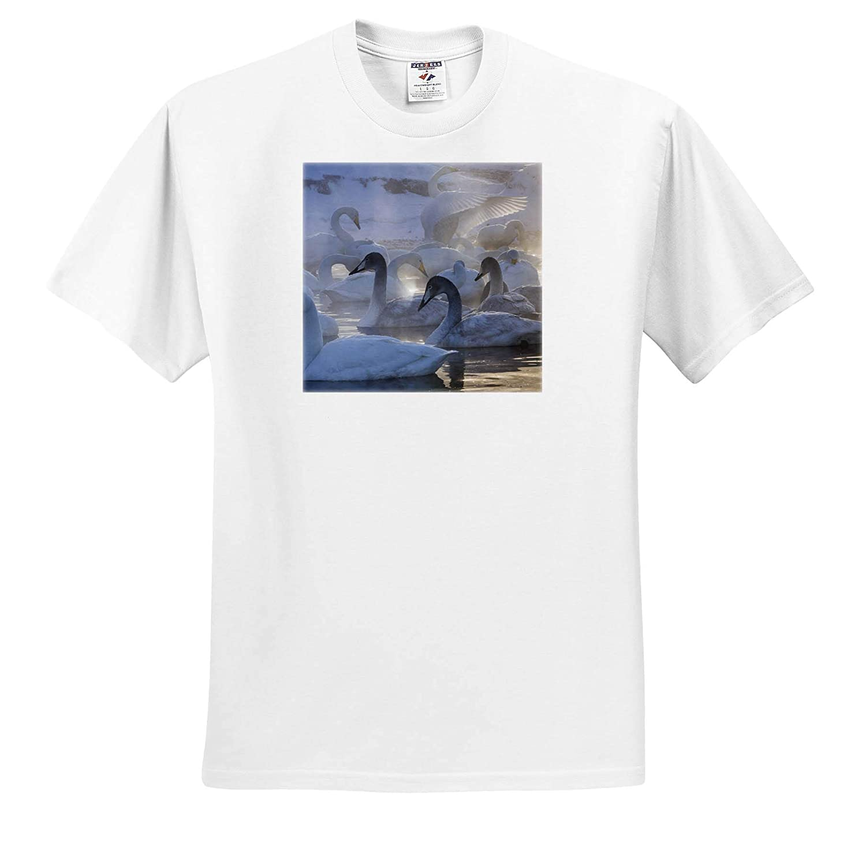 Japan Whooper Swans 3dRose Danita Delimont Hokkaido Island - Adult T-Shirt XL Swans ts/_312754