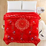 Double thick Wedding red blanket thick-pile carpet in winter cover wedding celebration red double blanket ,200X230-7 catty, bright yellow multi-multi-fu - Red