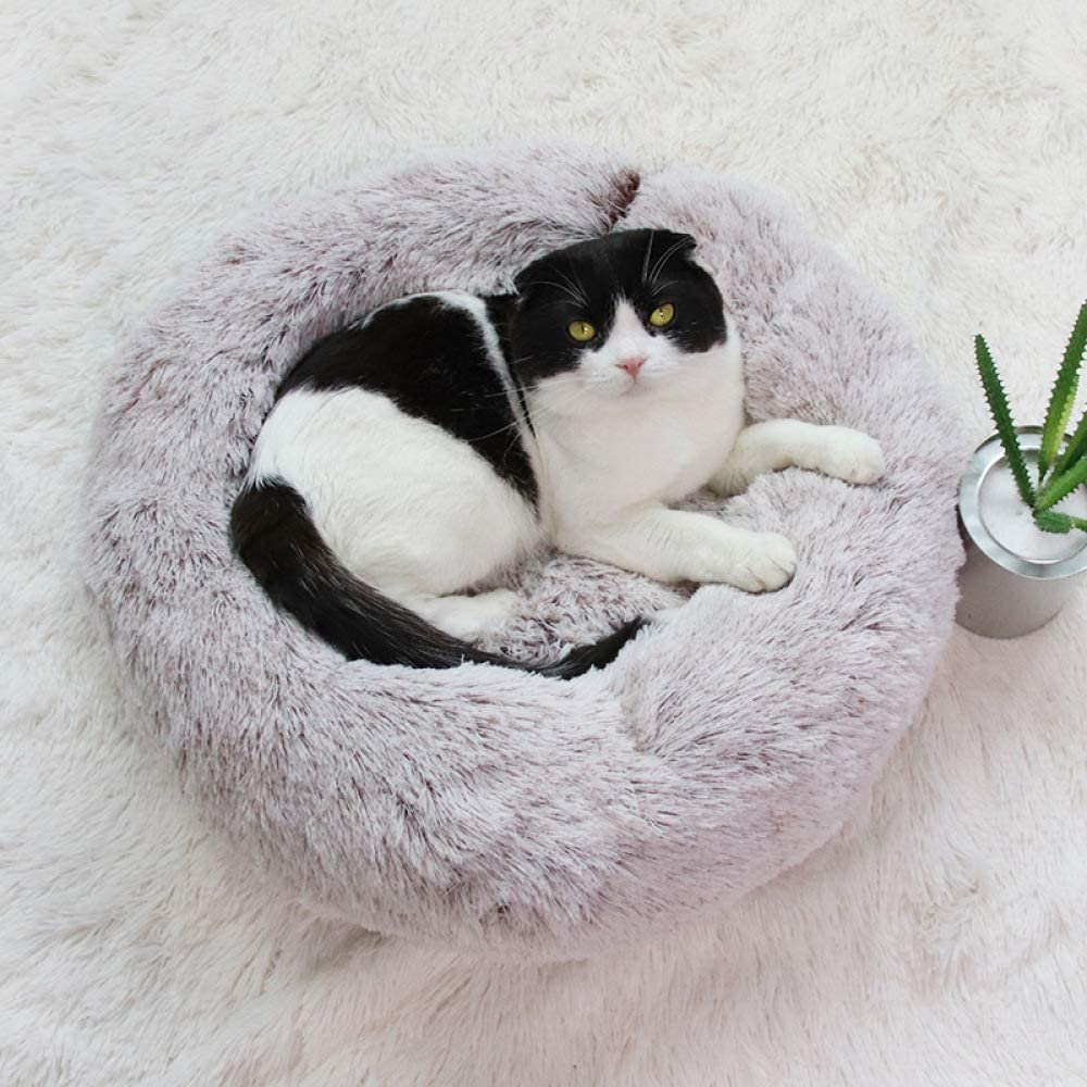 YYII Suministros para Mascotas Jaula de Felpa Arena para Gatos ...