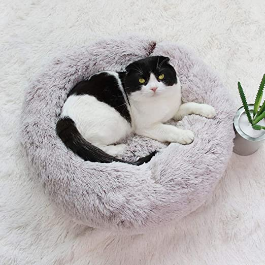 YYII Suministros para Mascotas Felpa Perrera Arena para Gatos ...