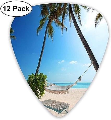 Tropical Paradise Sunshine Beach Coast Sea Palm Trees Púas de guitarra clásica (paquete de 12) para guitarra eléctrica, guitarra acústica: Amazon.es: Instrumentos musicales