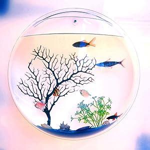 NORHOR Closed Aquatic Ecosystem,Hanging Wall Mounted Fish Bowl,Home Decoration Pot Wall Hanging Mount Plant Fish Bubble Aquarium Bowl Fish Tank Aquarium