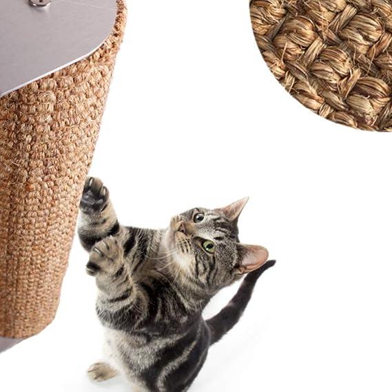 Amazon.com: Diversity World - Poste rascador para gatos ...