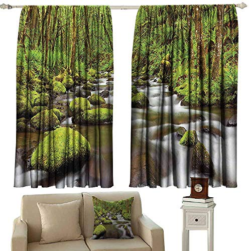 Scenery Decor Exquisite Curtain Photo of River with Rocks in The Water Rainforest Northwest Lush Photo Suitable for Bedroom Living Room Study, etc.63 Wx72 L Green and Brown ()