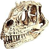 Resin Ceratosaurus Dinosaur Skull Fossil Model Bar Decor Collectibles - white, 20x11x8 cm