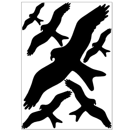 Bird Scarer Sticker & Window Protection - 6 Bird Silhouettes