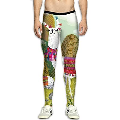 Virgo Llama Alpaca Long Compression Pants/Running Tights Gym Tights For Men Runners Tall