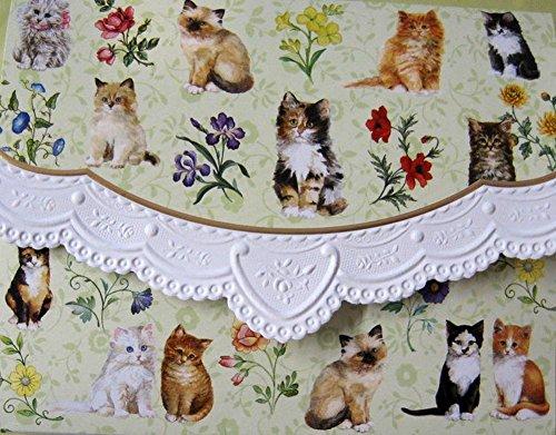 Carol's Rose Garden Kittens Portfolio Blank 10