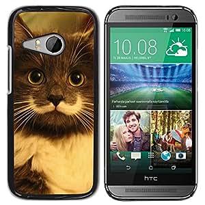 Be Good Phone Accessory // Dura Cáscara cubierta Protectora Caso Carcasa Funda de Protección para HTC ONE MINI 2 / M8 MINI // Hamilton Hipster Cat Moustache Longhair