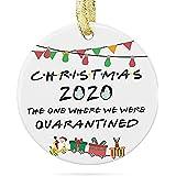 Raincol 2020 Christmas Ornament - Quarantine Christmas Ornament - Christmas Quarantine Ornament - 2020 Ornament - Funny Chris