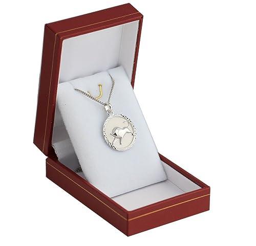 Colgante de plata maciza con medalla astral del signo del ...
