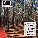 Longleaf Pine Straw Roll for Landscaping - Red