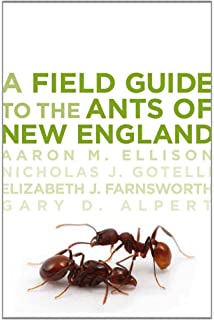 ants of north america fisher brian l cover stefan p ph d