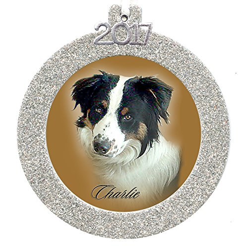 - 2017 Magnetic Glitter Christmas Photo Frame Ornament with Crystal Clear Photo Protector, Round - Silver