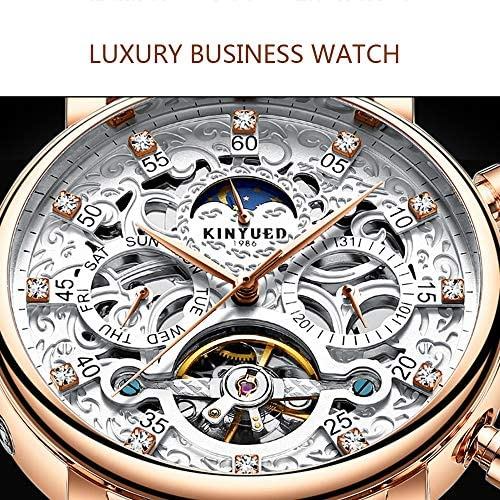Fesjoy Men Mechanical Watch Luxury Diamond Orologio meccanico automatico Impermeabile Self-Wind Skeleton Uomo Business Orologio crono in vera pelle + scatola
