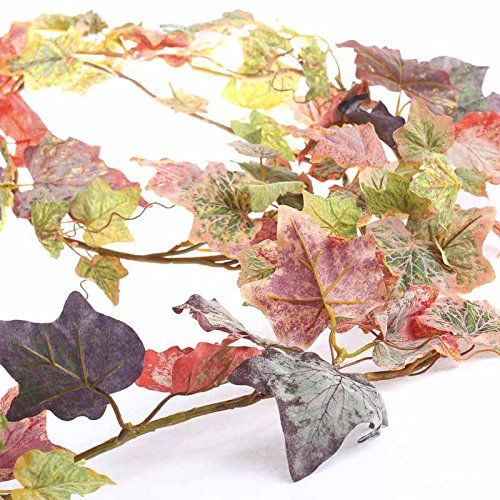 Pair of Colorful Flocked Autumn Grape Leaf Garlands for Arranging, Crafting and Embellishing Unknown