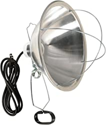 Woods Clamp Lamp with 10 Inch Reflector and Bulb Guard (300 Watt Bulb, 6