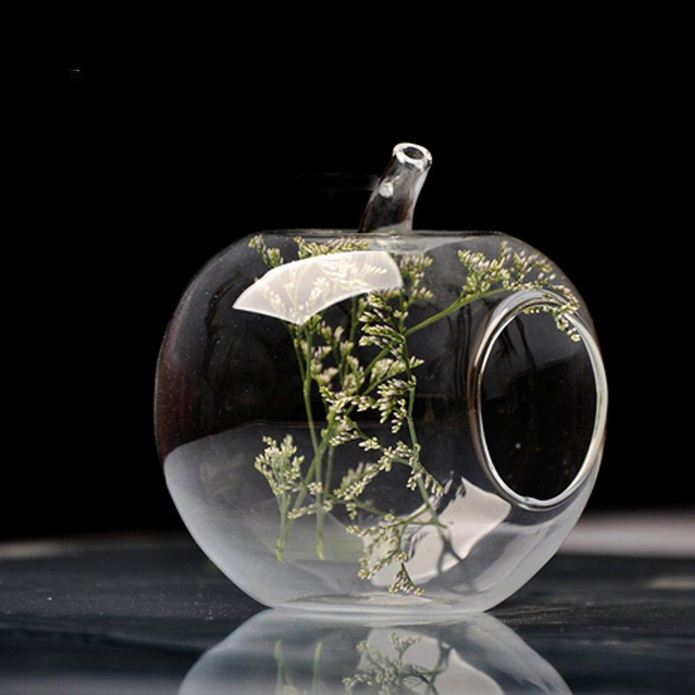 Helen Zora Clear Apple Glass Hanging Vase Bottle Terrarium Container Plant Flower Decor