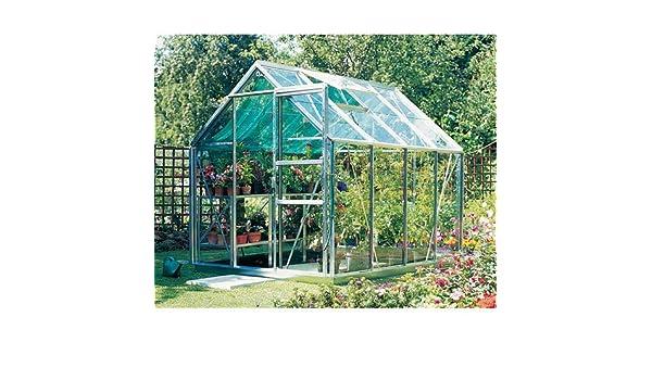 Eden Halls invernaderos Ltd de bebé en una Bellota Eden 66 - de Aluminio para invernaderos: - de cristal 3 mm cristal Horticultural: Amazon.es: Jardín